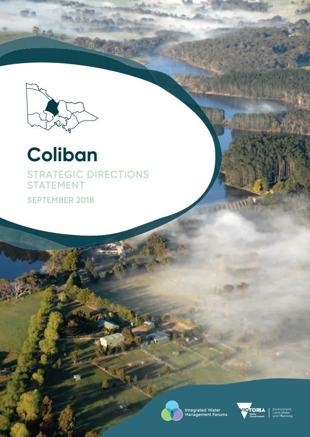 Coliban Strategic Directions Statement