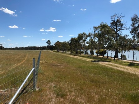 Fencing and dirt road along the Wimmera River