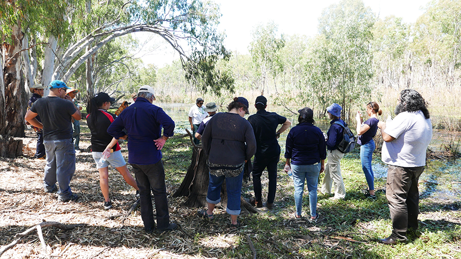 Barapa Barapa sharing stories about their Water for Country project at Reedy Lagoon – Jan 2018