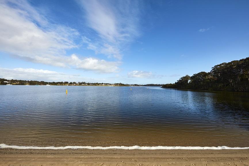 lake bank