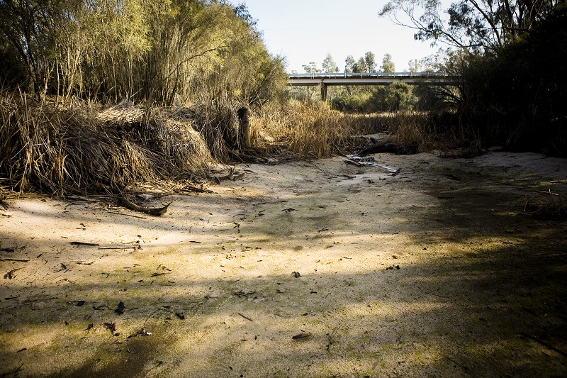 A dry riverbed in the Wimmera River
