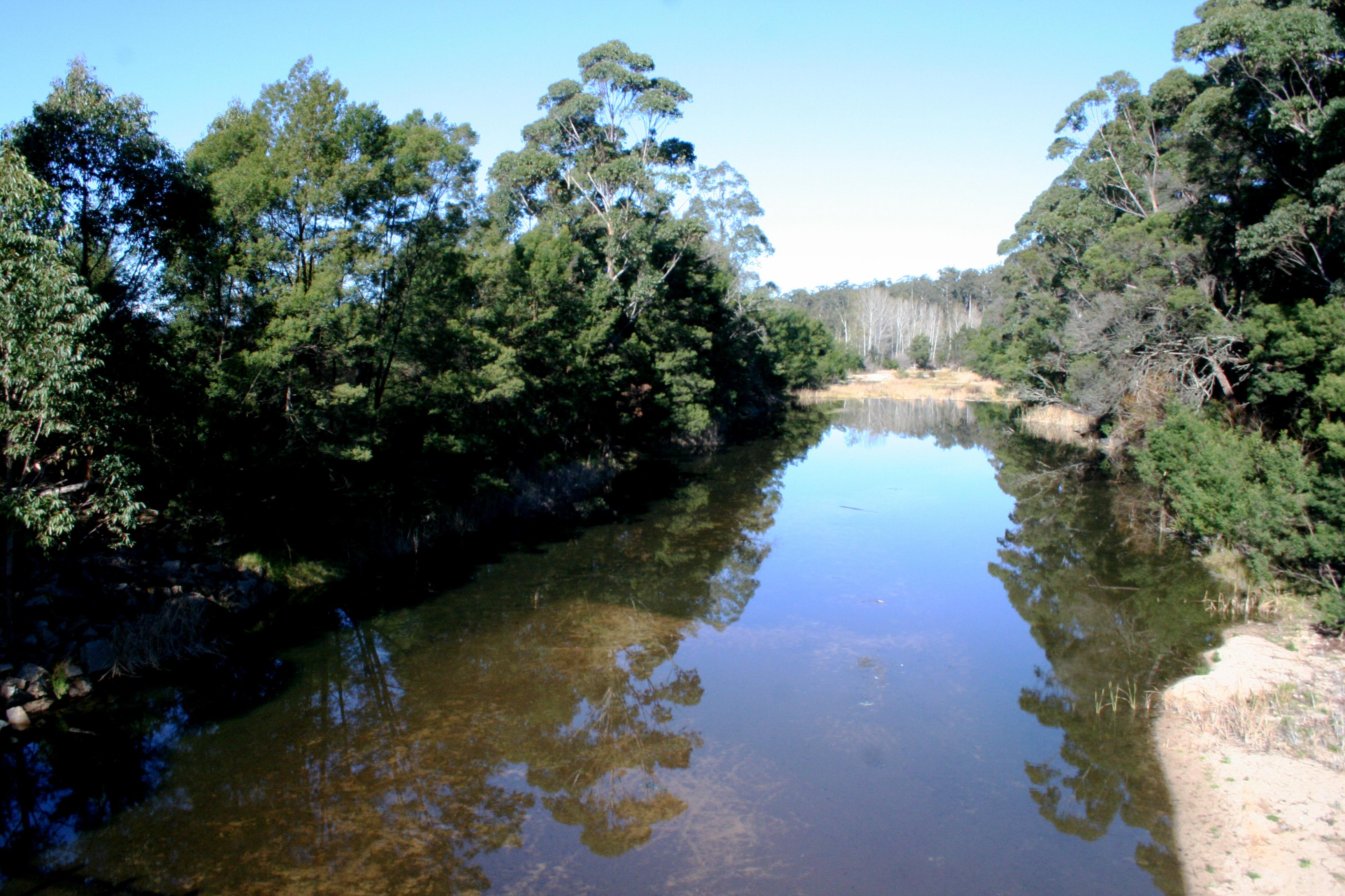 Cann River after restoration
