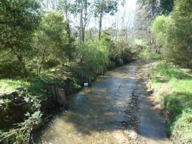 Creek with vegetation on both banks