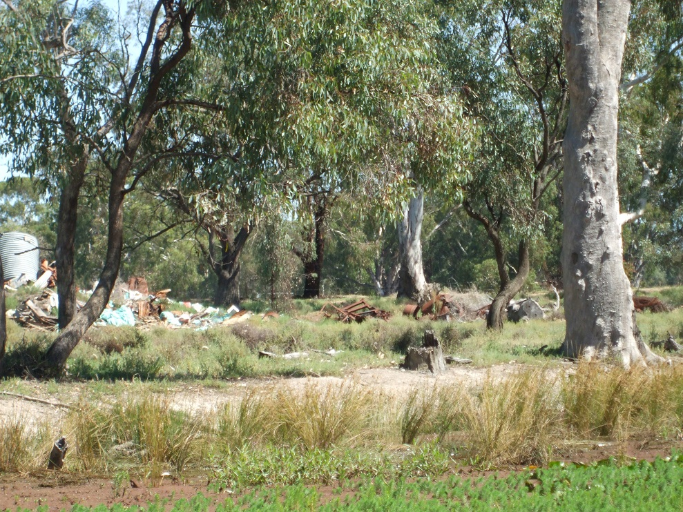 Dumped assorted rubbish, including machinery, in the middle of native vegetation