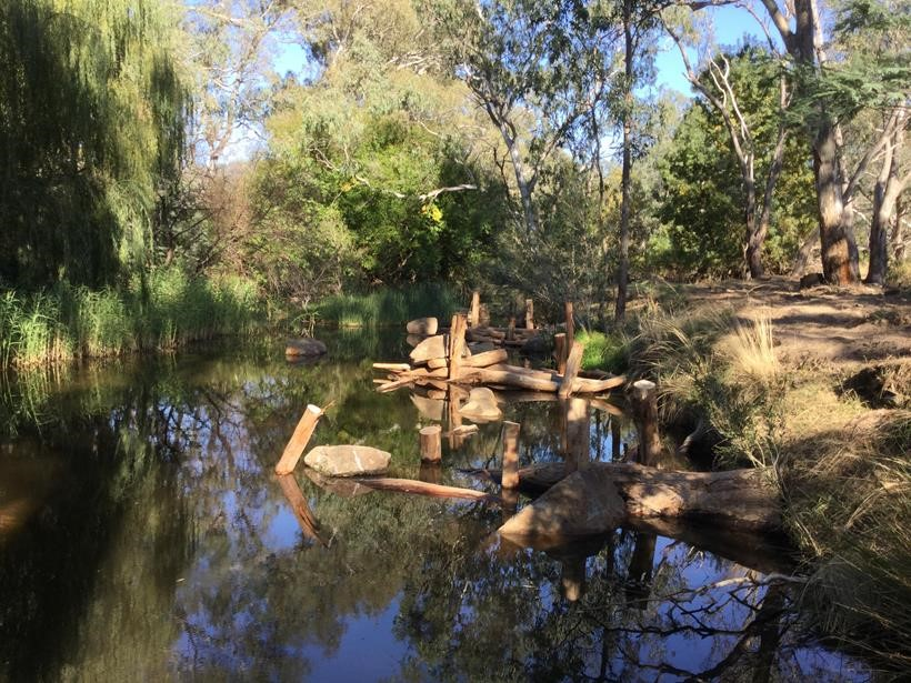 Large wood and boulders have been placed in waterways to improve and protect river banks, encourage depth in channels and provide habitat for fish.