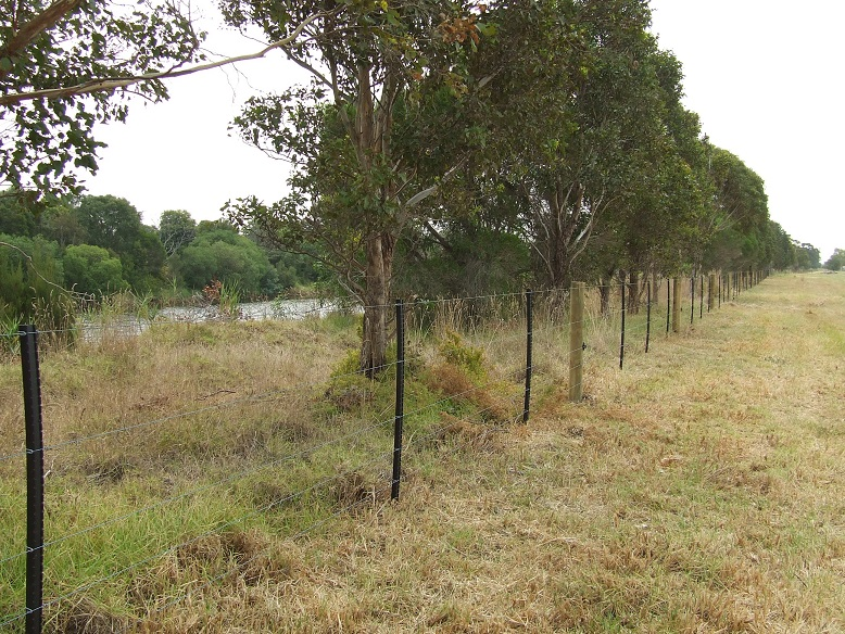 Fenced agricultural land on right, creek and native vegetation on right