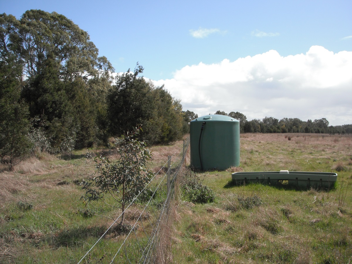 Water tank and trough separated from creek by a fence