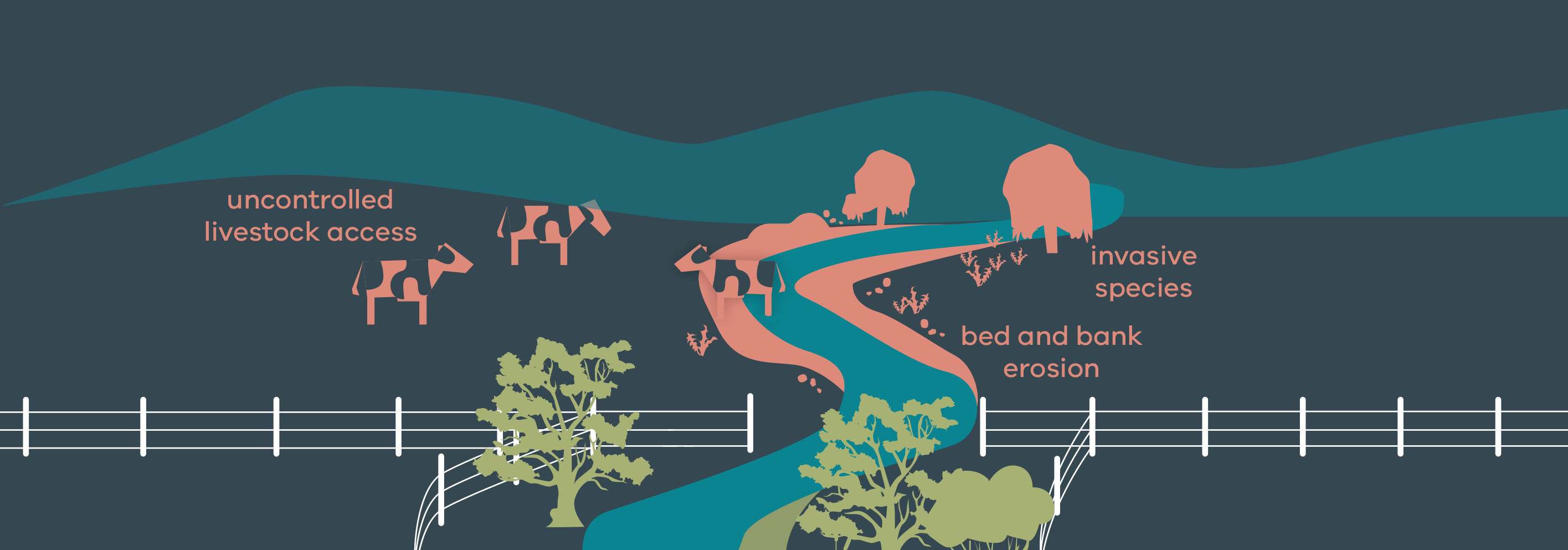 Stylised image showing threats to riparian land including uncontrolled livestock access, invasive species and bed and bank erosion