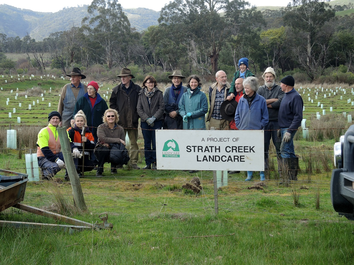 14 volunteers standing behind Strath Creek Landcare sign with newly planted vegetation in the background
