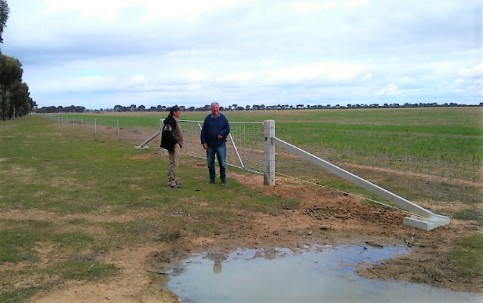 Two people standing in a field at the Kamarooka Wetlands Complex