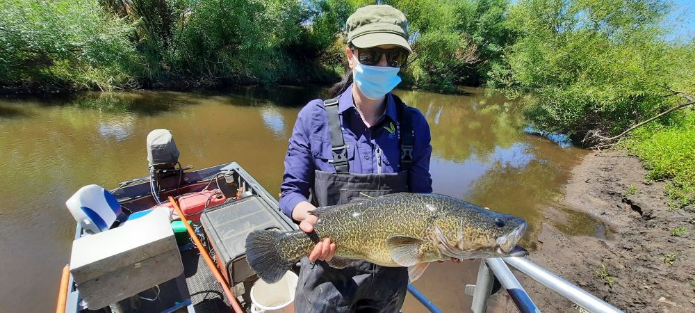 Lauren Johnson with large Murray cod