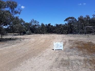A dirt road at Cokum Reserve before restoration