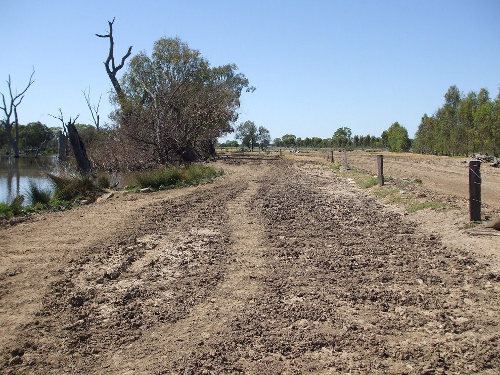 Fenced farmland on rights, dirt vehicle track through centre, creek on left