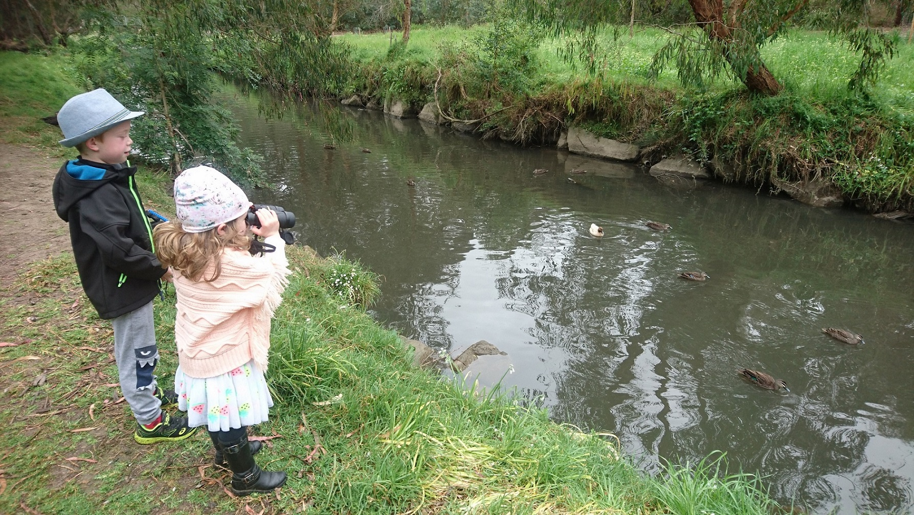 Photo of two young children on creek bank observing birds on the water. The little girl using binoculars.